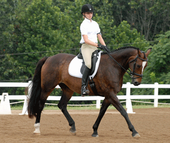Youth member on horse competing in Dressage