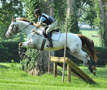 Pony Club member competing in cross-country