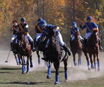 Pony Club members playing Polo
