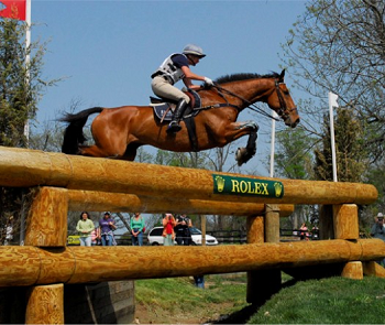Horse and rider jumping over Cross-Country obstacle