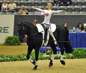 Vaulter on horse in competition