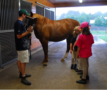 Older Pony Club member with horse in barn teaching youth members